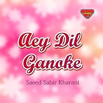 Aey Dil Ganoke