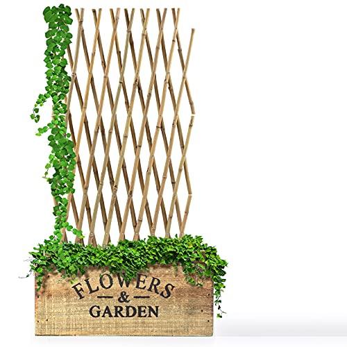 Floordirekt Bambus Rankgitter für Garten, Balkon & Terrasse | Individuell ausziehbar | Witterungsbeständig & langlebig | Bambusspalier (180 x 180 cm)