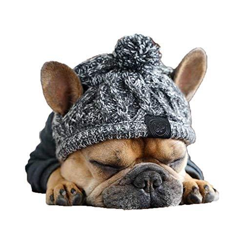 Carolilly Gestrickte Wintermütze Hundemütze Hundehut Haustier Bekleidung Herbst Winter Strickmütze Warme Kappe für Hunde Party Fotografie Kostüm (Grau, M)