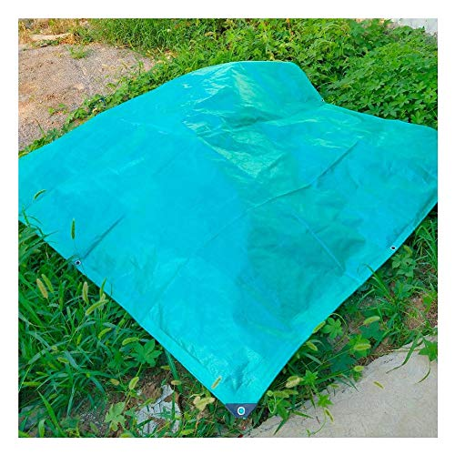 WHAIYAO Tarpaulin Waterproof Heavy Duty Outdoor Ground Flower Plant Sheet Covers Rainproof Tarp, 18 Size (Color : Green, Size : 6X8M)
