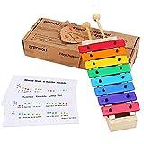 ammoon metallofono per bambini, xylophone glockenspiel con 8 toni colorati e mallets di legno,strumento musicale percussioni, regalo giocattolo educativo per i bambini