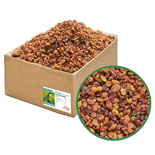 Paul´s Mühle Rosinen, ungeschwefelt in Speisequalität, Wildvogelfutter für Insekten- und Früchtefresser, 12,5 kg