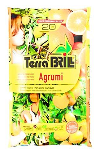 BRILL Terra Limoni e Agrumi da 20LT