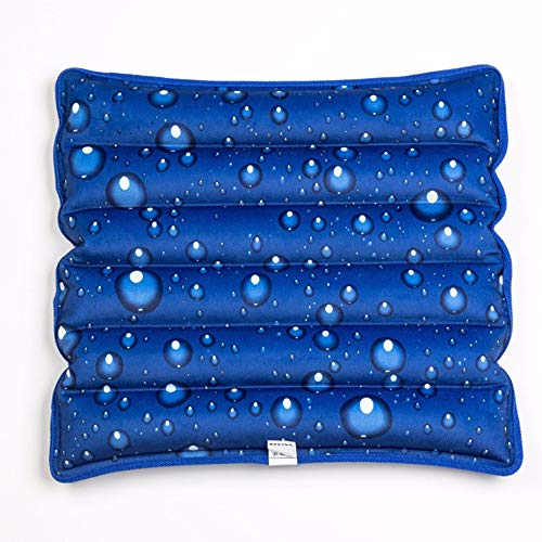 NERLMIAY Cool Ice Pillows Cushion,Water Filling Ice Cushion Chair Pad,Pet Cushion,Summer Ice Pad,Ice Packs,Beaches Cushion,Car Cushion,Office Cushion (Size:17.7x17.7)