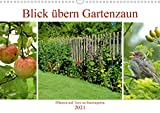 Blick übern Gartenzaun (Wandkalender 2021 DIN A3 quer)