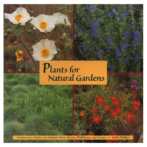 Plants For Natural Gardens Southwestern Native Adaptive Trees