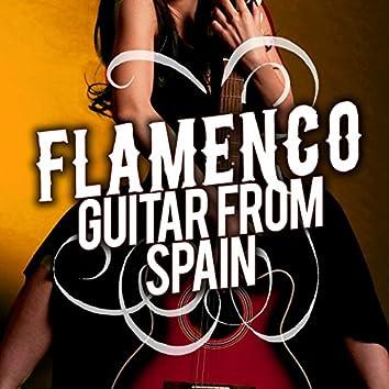 Flamenco Guitar from Spain