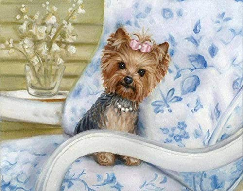 Dog on Chair Yorkshire Terrier DIY Paint by Numbers Kits Painting for Adults Kids Birthday Wedding Canvas Gifts