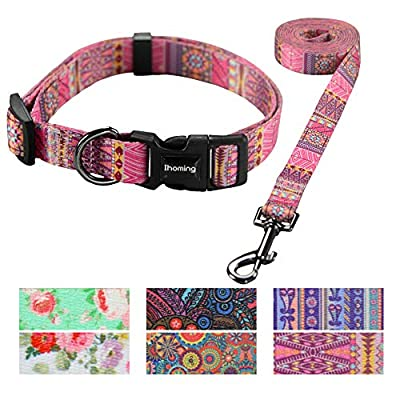 Ihoming Pet Collar Leash Set Halloween Bat Combo Safety Set for Daily Outdoor Walking Running Training Small Medium Large Dogs Cats Love-Arrow Small