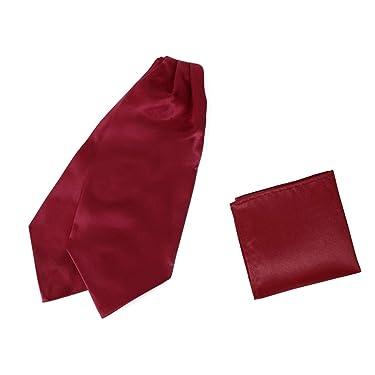 Dan Smith Plain Men's Fashion Cravat Microfiber Wedding Ascot Tie Extra Long Size 53 inches