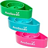AvoSeedo Bowl Grow Your Own Avocado Tree, Evergreen, Perfect Avocado Tree Growing Kit for Every Avocado Lover - Green, Blue & Pink