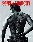 POSTER SONS OF ANARCHY 100x70cm