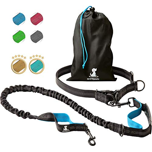 Dog Waist Harness