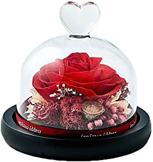 Dakotan Forever Flowers,Handmade Forever Rose- Preserved Flower Rose with Heart Shape Glass -Romantic Gifts for Her, Valentine's Day Mother's Day Christmas Anniversary Birthday Thanksgiving(Red)