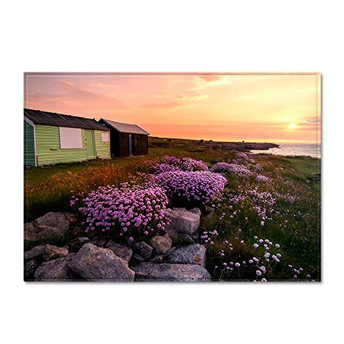 RGBVVM Alfombras Salon Flor Purpura 180 x 280 cm Suave Moderna Alfombra Antideslizante Alfombra Cómodo para Sala deEstar Dormitorio Estudio Habitación Infantil