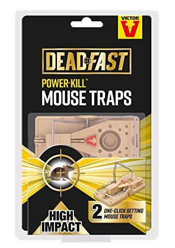 Deadfast Power Kill Mouse Trap, Twin P