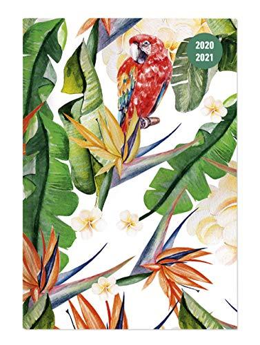 Alpha Edition Diario Agenda Scuola Collegetimer 2020/2021, Giornaliera, Formato 10x15 cm, Sogno tropicale, 352 pagine