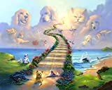 Treasure Chest Shoppe 16x20 11x14 or 8x10 Rainbow Bridge All Pets Go Stairway to Heaven Art Print Sympathy Memorial Dogs Cats (16x20)