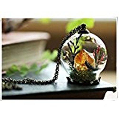 heng yuan tian cheng Citrien kristal terrarium ketting, echte mos ketting
