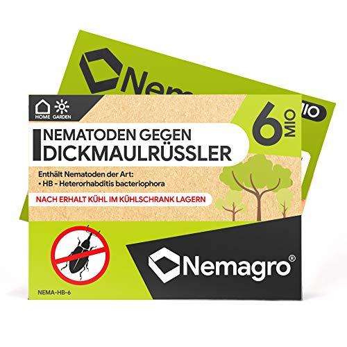 Nemagro® HB Nematoden gegen Dickmaulrüssler 6 MIO