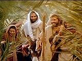 Matthew Chapters 16-23