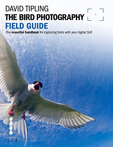 The Bird Photography Field Guide: The Essential Handbook for Capturing Birds with...
