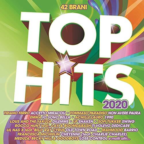 Top Hits 2020 / Various