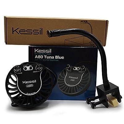 Kessil Tuna Blue A80 LED Light w/ mini gooseneck