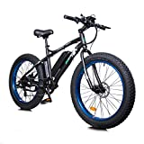 ECOTRIC Powerful Electric Bicycle 26' X 4' Fat Tire Bike 500W 36V/12AH Battery EBike Moped Snow Beach Mountain Ebike Throttle & Pedal Assist - 90% Pre-Assembled (Blue)
