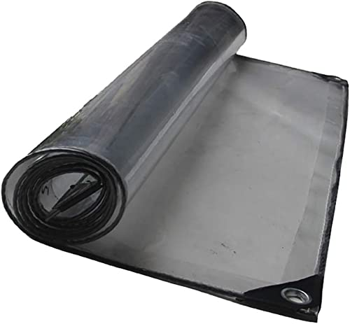 SAN_F Bache claire avec oeillets Toile de prougeection imperméable imperméable imperméable imperméable à l'eau de pluie de feuille de bache de serre - 420g   m2 (Taille   4×6)