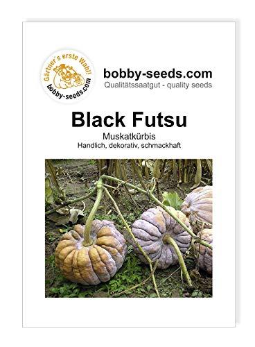 Black Futsu Kürbissamen von Bobby-Seeds, Portion