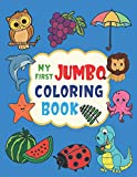 My First Jumbo Coloring Book: Big Coloring Book For Toddlers Ages 2-4 Years | First Coloring Book With Larger Images | Gift Idea For Kids Ages 2-4, 1-3
