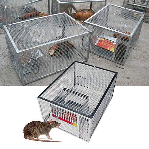 RXLLSY Piège à Souris continu Domestique, Cage de piège à Serpent et à Rat Automatique pour Grand Espace, Cage sûre et indolore, piège à Souris à Haute efficacité