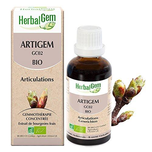 HerbalGem - COMPLEXES DE GEMMOTHÉRAPIE - ARTIGEM GC02 BIO - 30 ml