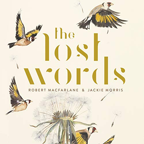The Lost Words audiobook cover art