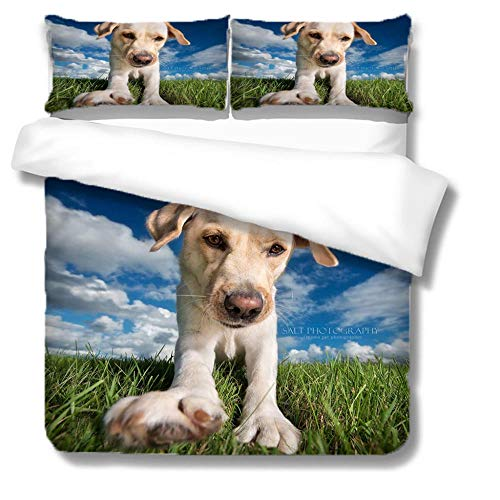 Duvet Cover Set King White Cloud Labrador 3 Pieces Bedding Set with Zipper Closure,Easy Care Anti-Allergic Soft & Smooth,Microfiber Quilt Cover Sets Includes 2 Pillowcases 200x240cm