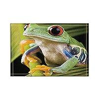 Assanu 葉の上の動物の装飾カエル風呂敷滑り止めの床玄関屋外屋内正面玄関マット、15.7x23.6in風呂敷バスルーム敷物