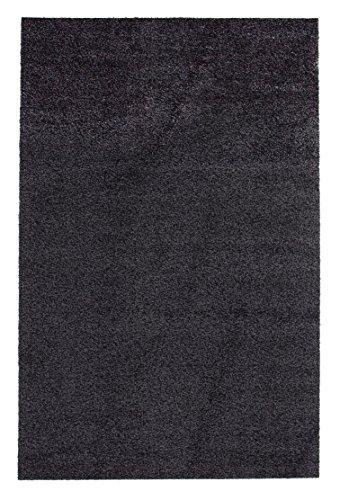 andiamo Schmutzfangmatte Samson waschbarer Teppich für den Innenbereich, 100 x 150 cm anthrazit