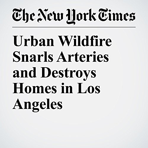 Urban Wildfire Snarls Arteries and Destroys Homes in Los Angeles copertina