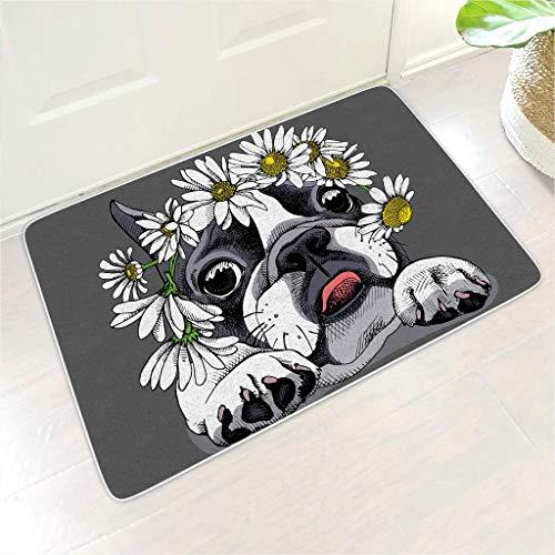 Bannanabut - Felpudo de entrada para perro, suave, absorbente, lavable, antideslizante, de goma, para interiores y exteriores, para el hogar, puerta delantera, entrada, color blanco, 45,7 x 76,2 cm