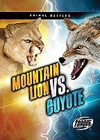 Mountain Lion Vs. Coyote (Animal Battles)
