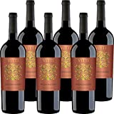 DENOMINAZIONE VINO: Puglia IGP; TIPO DI UVA: 100% Negroamaro; GRADAZIONE: 13,5%; TEMPERATURA SERVIZIO: 16-18°C; CONFEZIONE: 6 Bottiglie da 75 Cl;