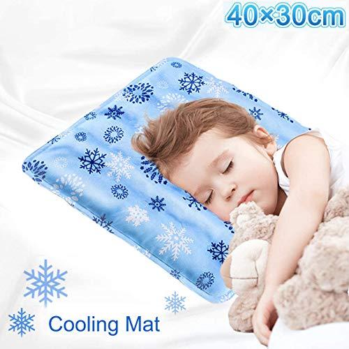 Materassino rinfrescante per dormire,cane gatto,animale domestico, cuscino refrigerante,tappetino di dissipazione del calore,per sedili auto,Fiocco di neve,30x40cm