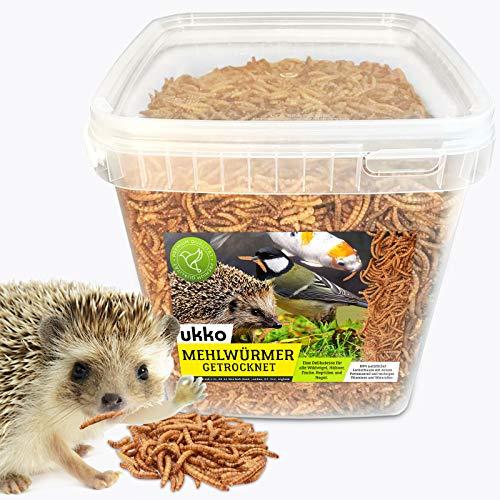 Ukko Mehlwürmer getrocknet 5 Liter Eimer, optimales Zusatz Futter für Reptilien, Fische, Vögel & Co.