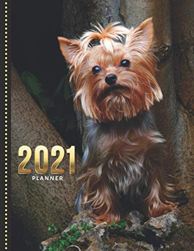 2021 Planner: Royal Canin Yorkshire Terrier Dog Photo / Daily Weekly Monthly / Dated 8.5x11 Life Organizer Notebook / 12 Month Calendar - Jan to Dec / ... / Christmas or New Years Gift for Dog Lover