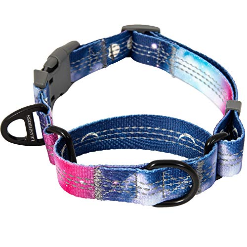 Leashboss Pattern Martingale Dog Collar, Reflective No-Pull Training Collar, Pattern Collection (Space Pattern - Small 12-15' Neck x 3/4' Wide)