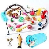NINECY Juego de 27 juguetes para gatos, con túnel para gatos, pescado, pelotas, ratones de juguete, hierba para gatos, juguete de plumas, accesorios para gatos