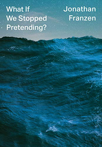 What If We Stopped Pretending? (English Edition)