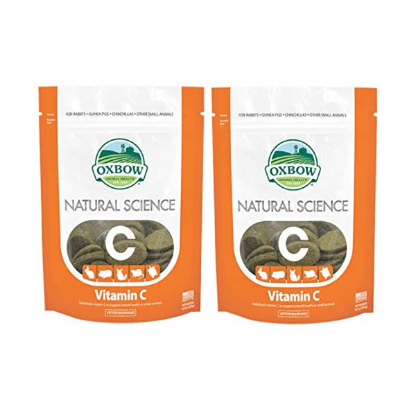 Natural Science – Vitamin C Supplement, 2 Packs of 60 Count- 120 Total