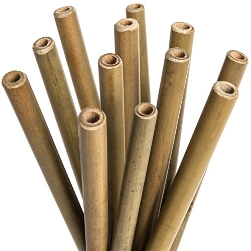 All Natural Bamboo Drinking Straws: 9.5 Inch Set of 12 Reusable Bamboo Straws - Includes 2 Bonus Nylon Cleaning Brushes - 100% Natural, Sustainable, Non-Toxic & Safe, for Home and Work